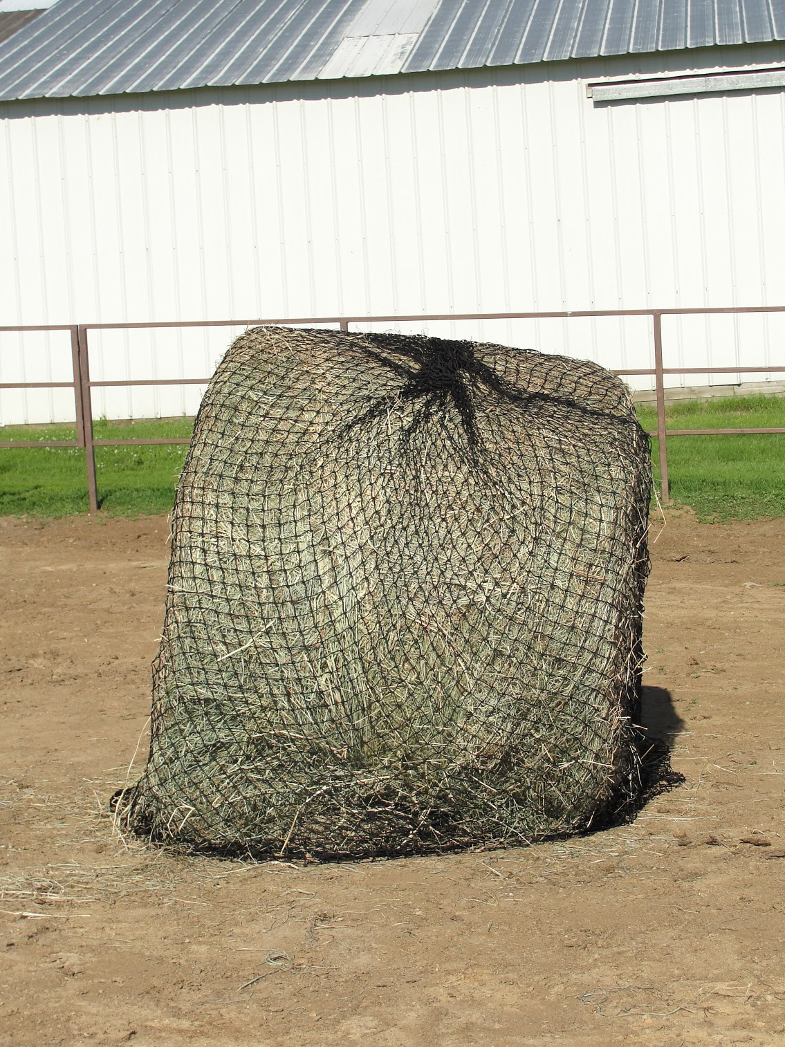 Feeding Horses With A Round Bale Feeder Umn Extension