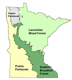 Map depicting the four biomes of Minnesota.
