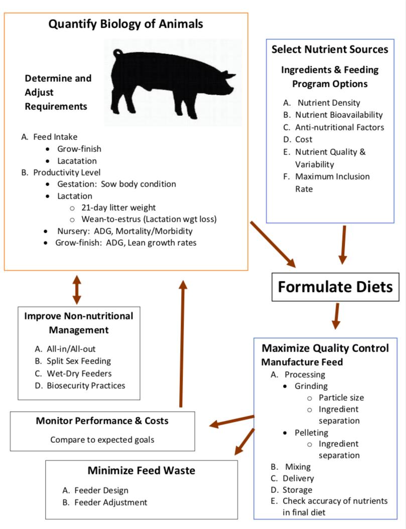 Formulating farm-specific swine diets | UMN Extension