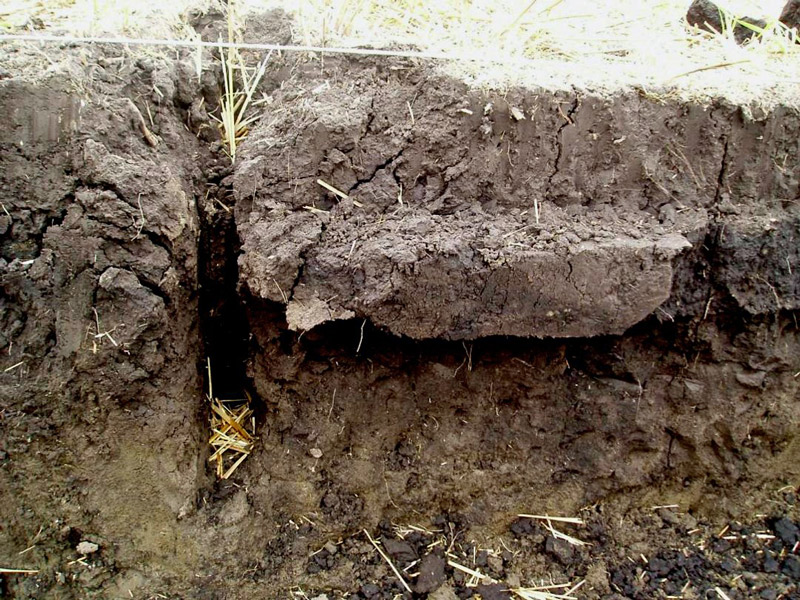side view of soil where top six inches appears to be separated from soil below it.