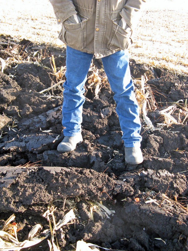 person standing on cloddy, clumpy soil.
