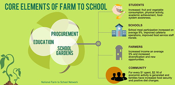 Infographic showing the core elements of farm to school explained in text below