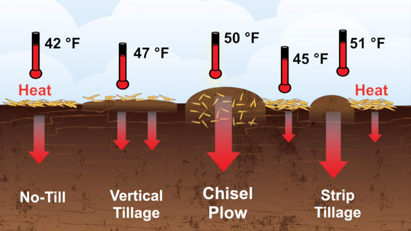 chart of air temperature and type of tilling.