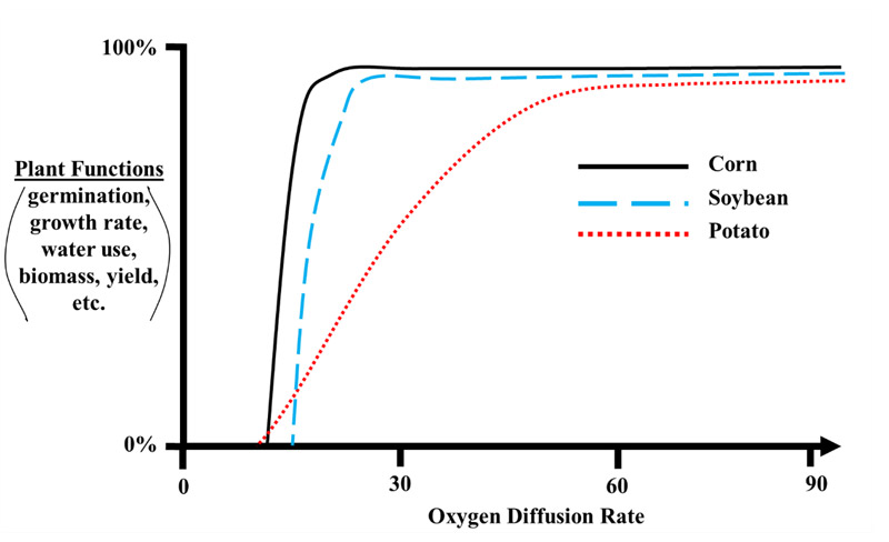 graph illustrating plant functions versus oxygen diffusion rate.