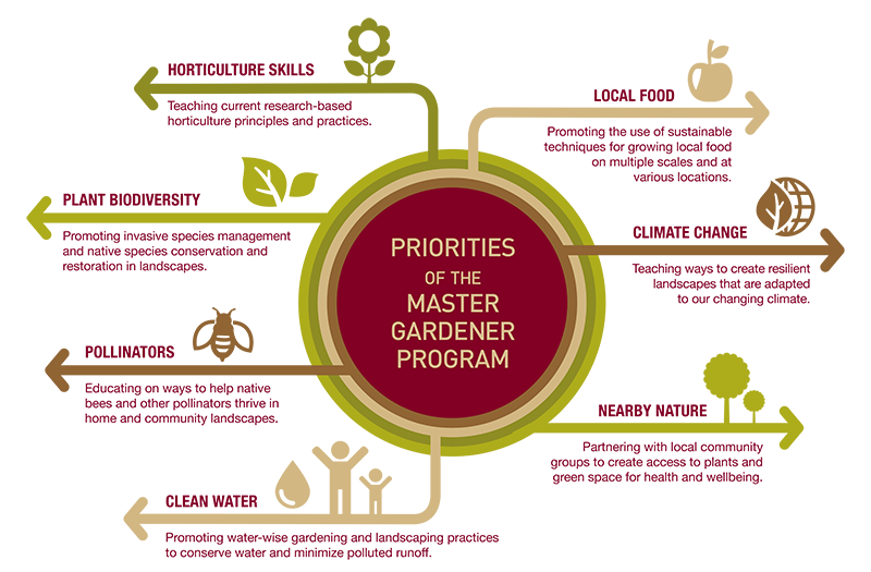 "graphic chart listing the seven priorities of the master gardener program that are described in the following text inside the drawer titled ""Program priorities"""