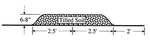 Black and white drawing of a raised ground bed