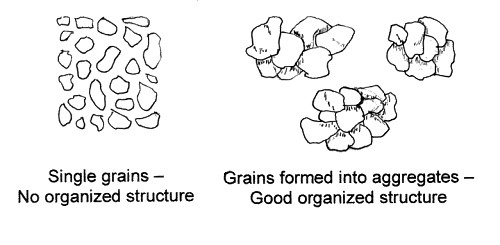 Black and white diagram showing organized and unorganized soil structure.