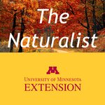The Naturalist podcast icon