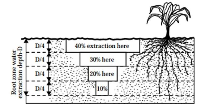 soil water extraction pattern graphic