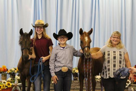 4-H: 2019 arabian horse winners