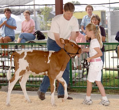 Emily Annexstad 2005 at young age with her red and white cow and an adult