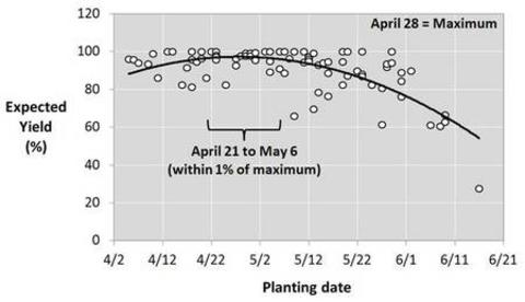 How corn grain yield responds to MN planting date, 1988-2003. April 21-May 6 = within 1% of maximum. April 28 = Maximum. Y axis is expected yield (%); X axis is planting date.