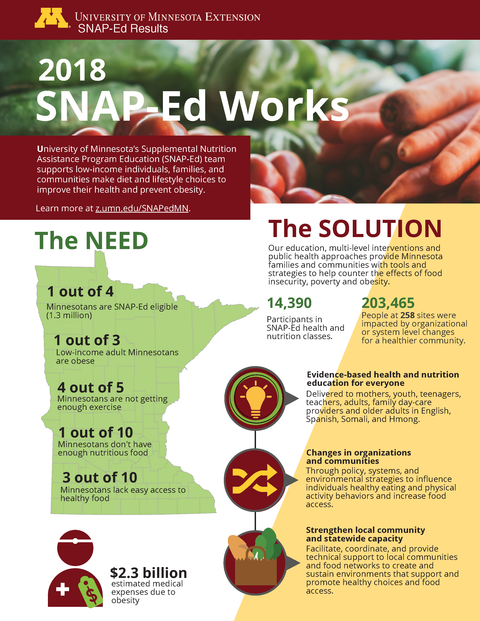 Minnesota SNAP-ed results infographic