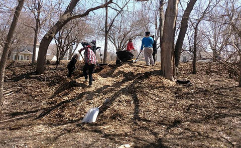 Pile of mulch in wooded area with people loading and moving with a wheelbarrow.