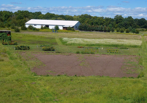 Large field plot of dirt with sparse patches of plantlife with a barn in the background.