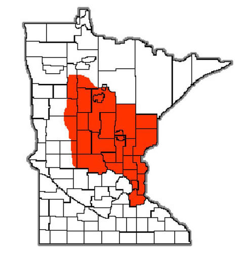 Map of Minnesota counties, red in the middle, eastern third of the state.