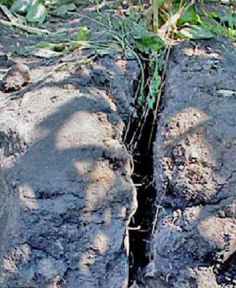 dry soil with a deep crack in it.