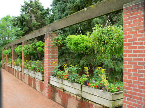 Containerized wooden raised garden beds in between brick columns along a pathway