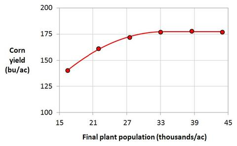 Graph with corn yield on the y-axis and final plant population on x-axis.  Corn yield levels out at slightly over 175 with a plant population of 33,000 per acre