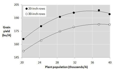 Graph with corn yield on y-axis and plant population on x-axis.  Two lines(20 inch and 30 inch rows) run parallel and trend up with 20 row ending at around 200 bushels, and 30 row ending at around180 bushels at 36,000 plants per acres
