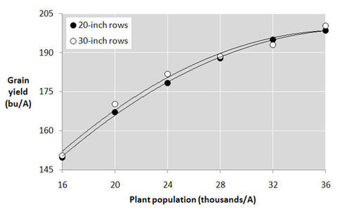 Graph with corn yield on y-axis and plant population on x-axis.  Two lines(20 inch and 30 inch rows) run parallel and trend up, ending at around 200 bushels at 36,000 plants per acres