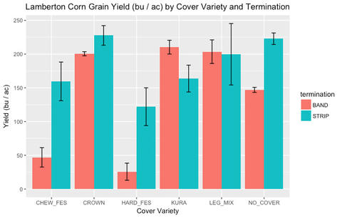 bar graph showing corn yield by type of cover crop and type of cover crop termination method.