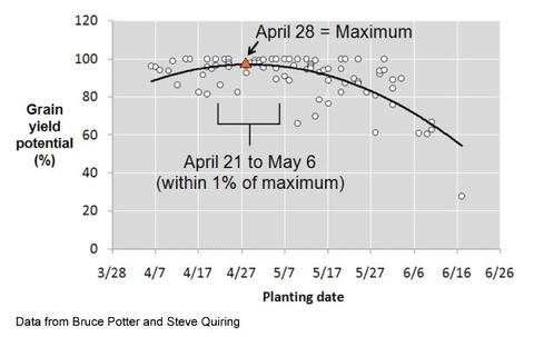 Graph showing corn grain yield potential on x-axis, planting date on y-axis. Line peaks on April 28th.