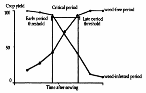chart showing critcal period for a crop field to be weed free. % crop yield on the y-axis, time after sowing on the x axis. the most critical period is in the middle of the growing period