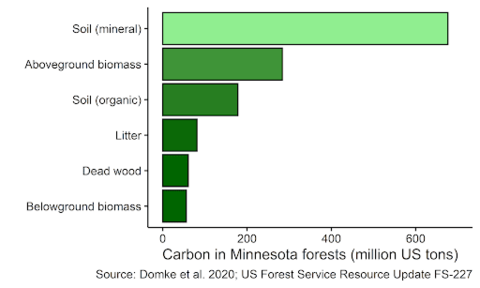Graph showing where carbon is stored in forests.
