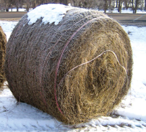 twine wrapped round bale