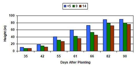 bar graph illustrating the effect of compaction and number of days after planting.