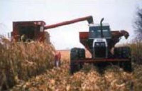 tractor and grain cart harvesting corn.