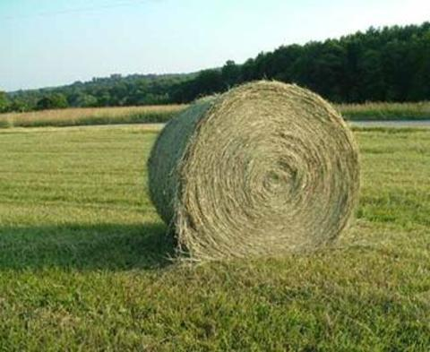 A large round bale