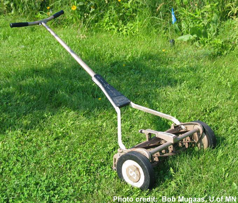 Mowers and mowing safety | UMN Extension