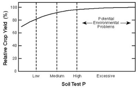 Line graph showing percent yield leveling off between medium and high soil test P