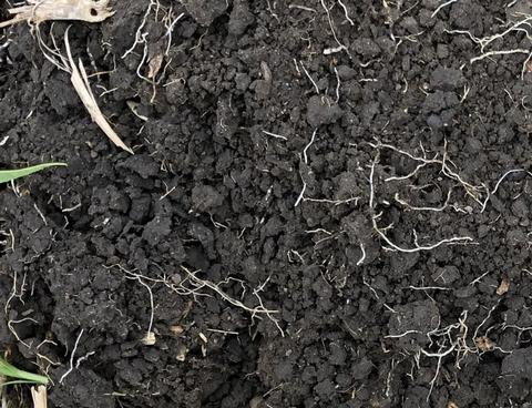 Example of well-aggregated soil
