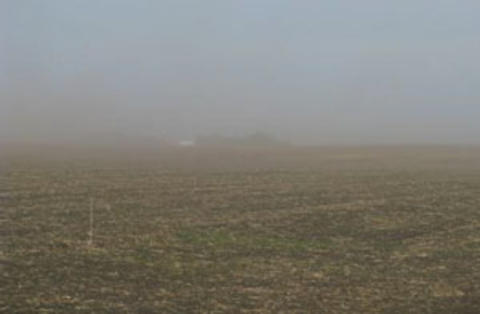 Dust blowing on a rolled, young crop.