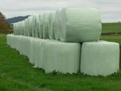 Green colored stacks of bale