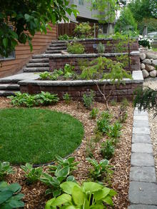 A garden with different types of perennial plants