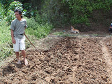 barefoot man manually hoeing soil with dog in background.