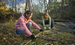 two girls gather brush in the woods