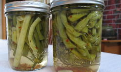 jars of pickled beans