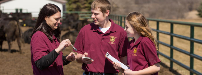 4-H'ers and mentor with cattle in background