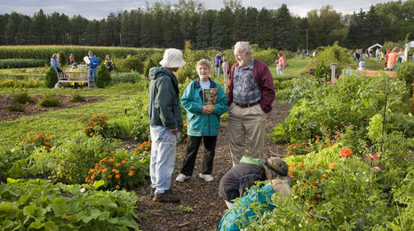 people standing and talking in a large community garden