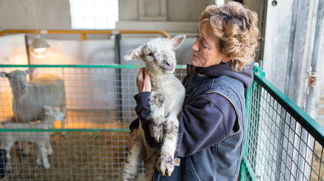 Farmer holding lamb in her arms.