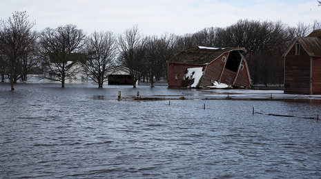 Flooded farmstead.