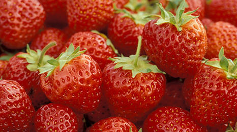 red, ripe strawberries