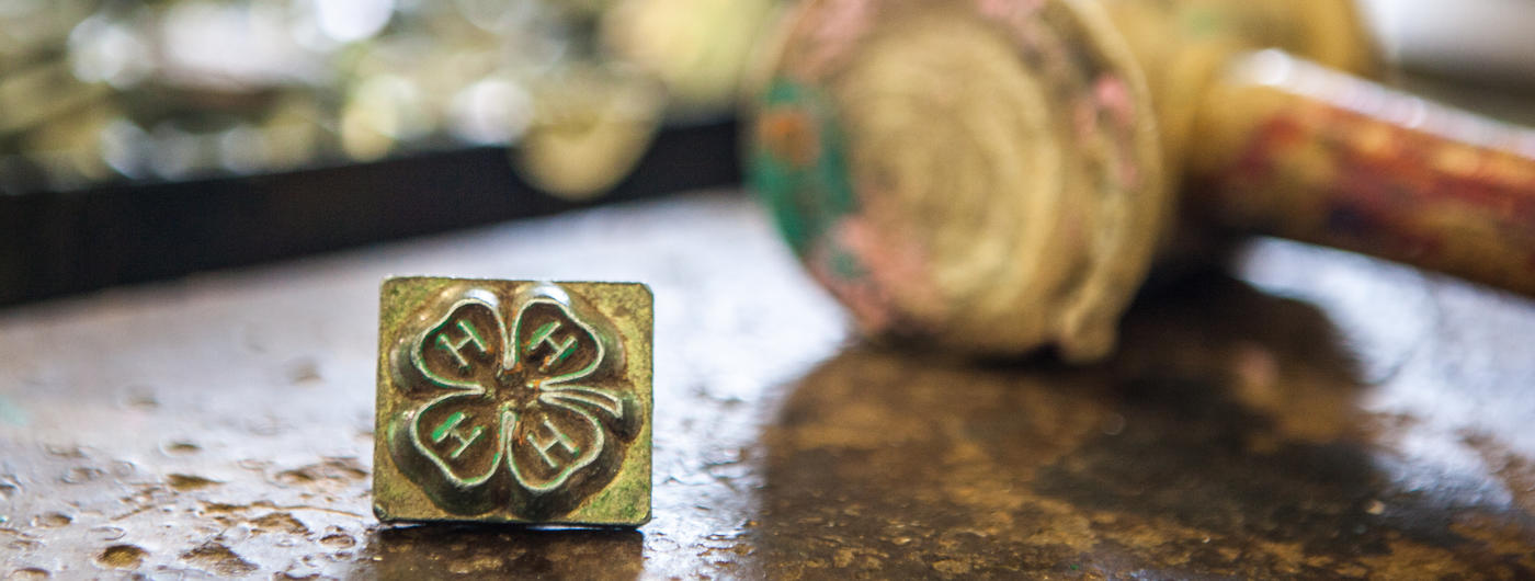 4-H scholarships, grants and awards