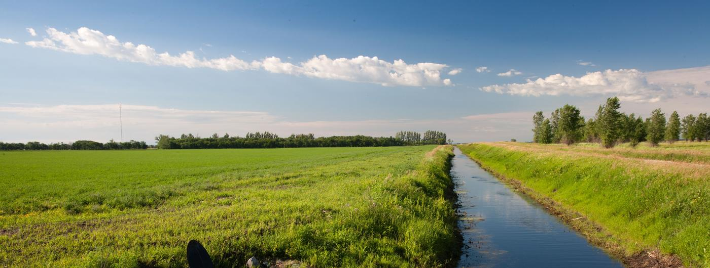 A ditch of water cutting through a field.