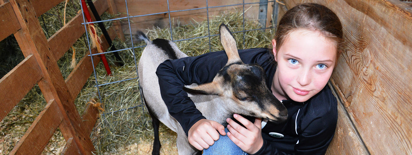 girl hugging her goat